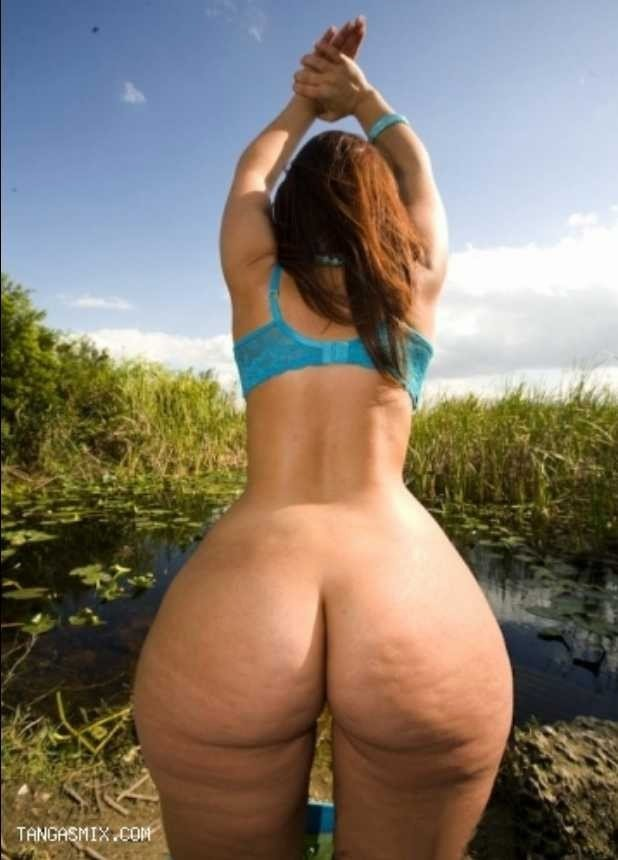 Wide Hips Phat Asses Curvy Girls Vrporn 1